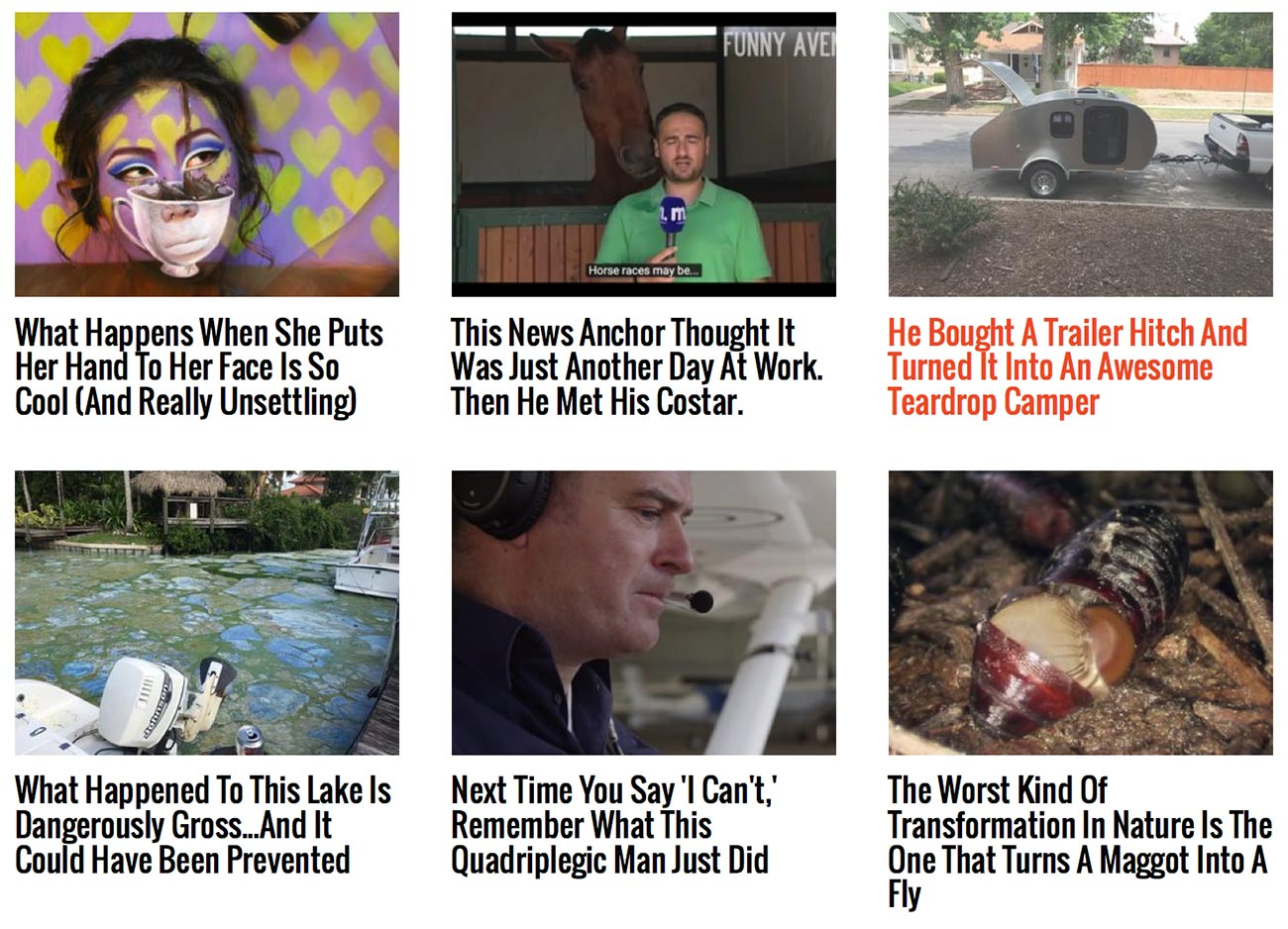 viral nova headlines