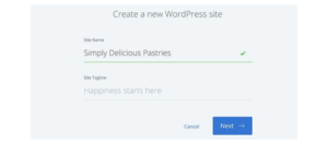 Naming your new WordPress site