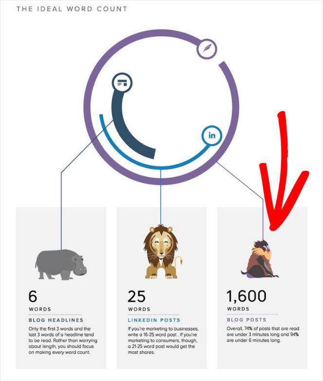 tampon-infographique-idéal-de-blog