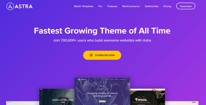 Astra themes