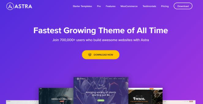 astra-wordpress-theme-for-blogs