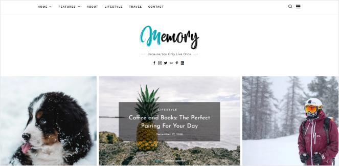 memory-wordpress-theme-blogs