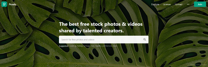 pexels-free-photos-for-blogs