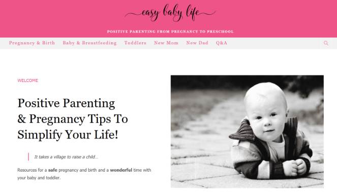 money-making-mom-blog-easy-baby-life