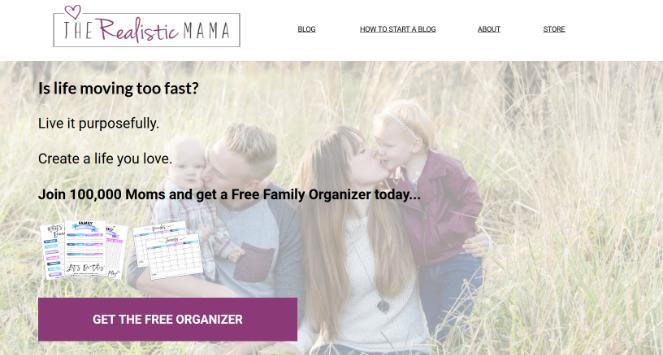 money-making-blog-realistic-mama