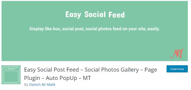 Easy Social Feed