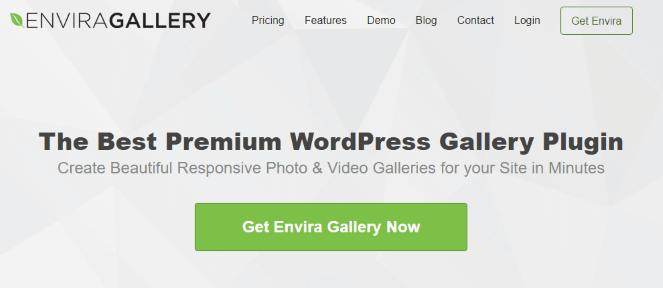 Plugin Envira Gallery