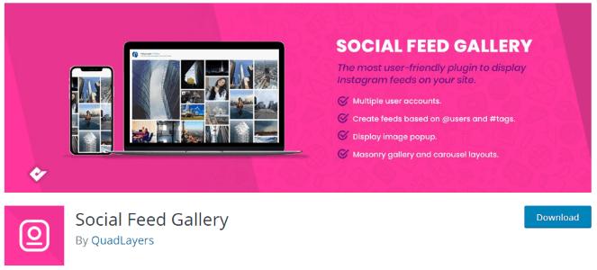 Galleria di feed di Instagram