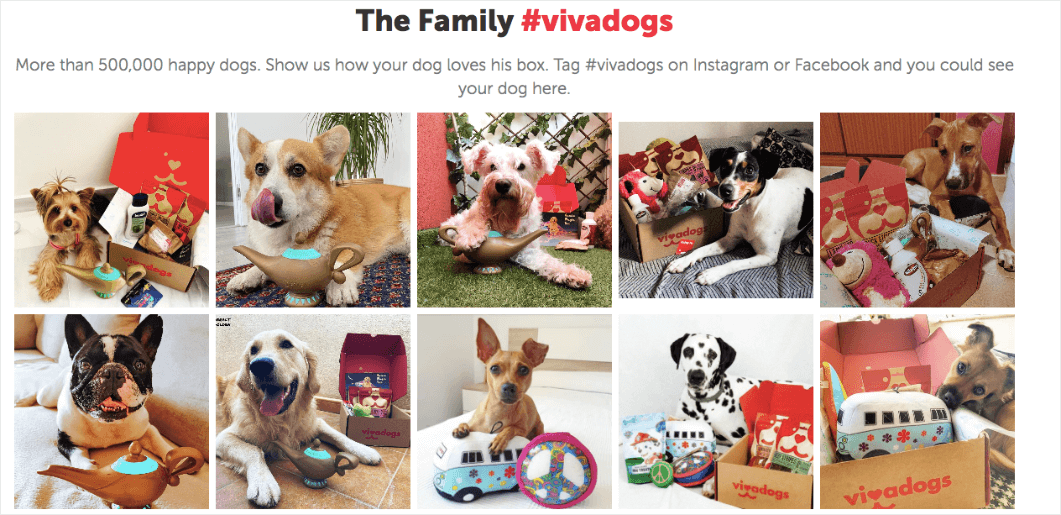 Vivadogs is an example of social proof. They show photos of their customer's dogs with their product