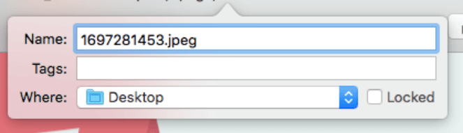An example of an image file name