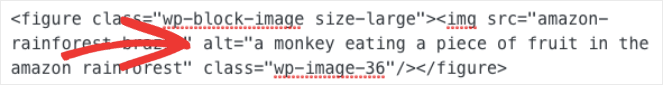 An example of what alt text looks like in HTML
