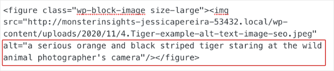 An example of an alt tag in HTML and how it improves image SEO