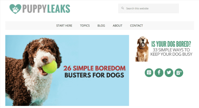 types of blogs that make money - pet blog example