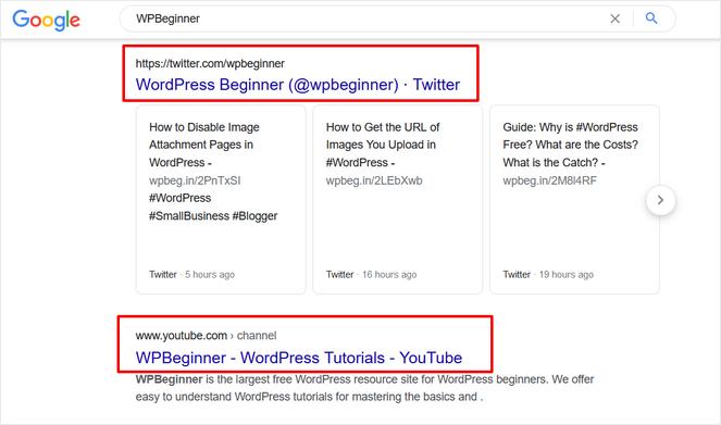 google search results for wpbeginner display social media platforms