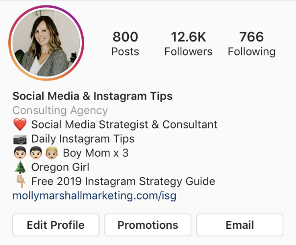 add link to lead magnet in your instagram bio