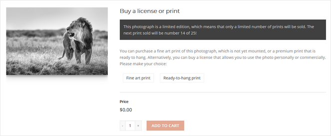 add photography prints to cart